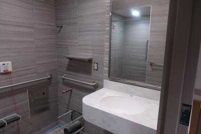 Construction Photo of Bathroom in Post-Partum Rooms